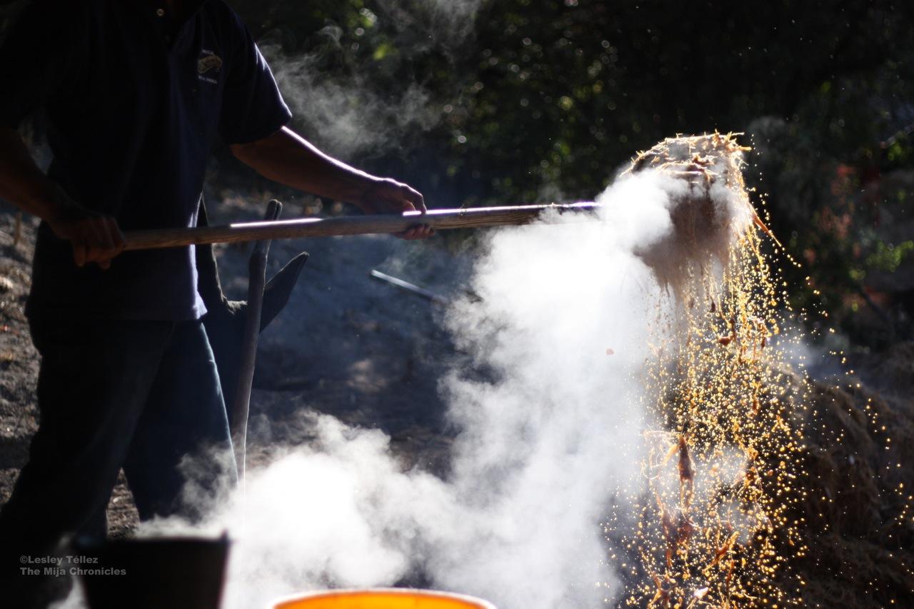 Making mezcal Oaxaca.jpg