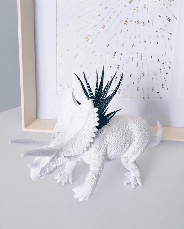 Dino-plante de chez Vertige boutique