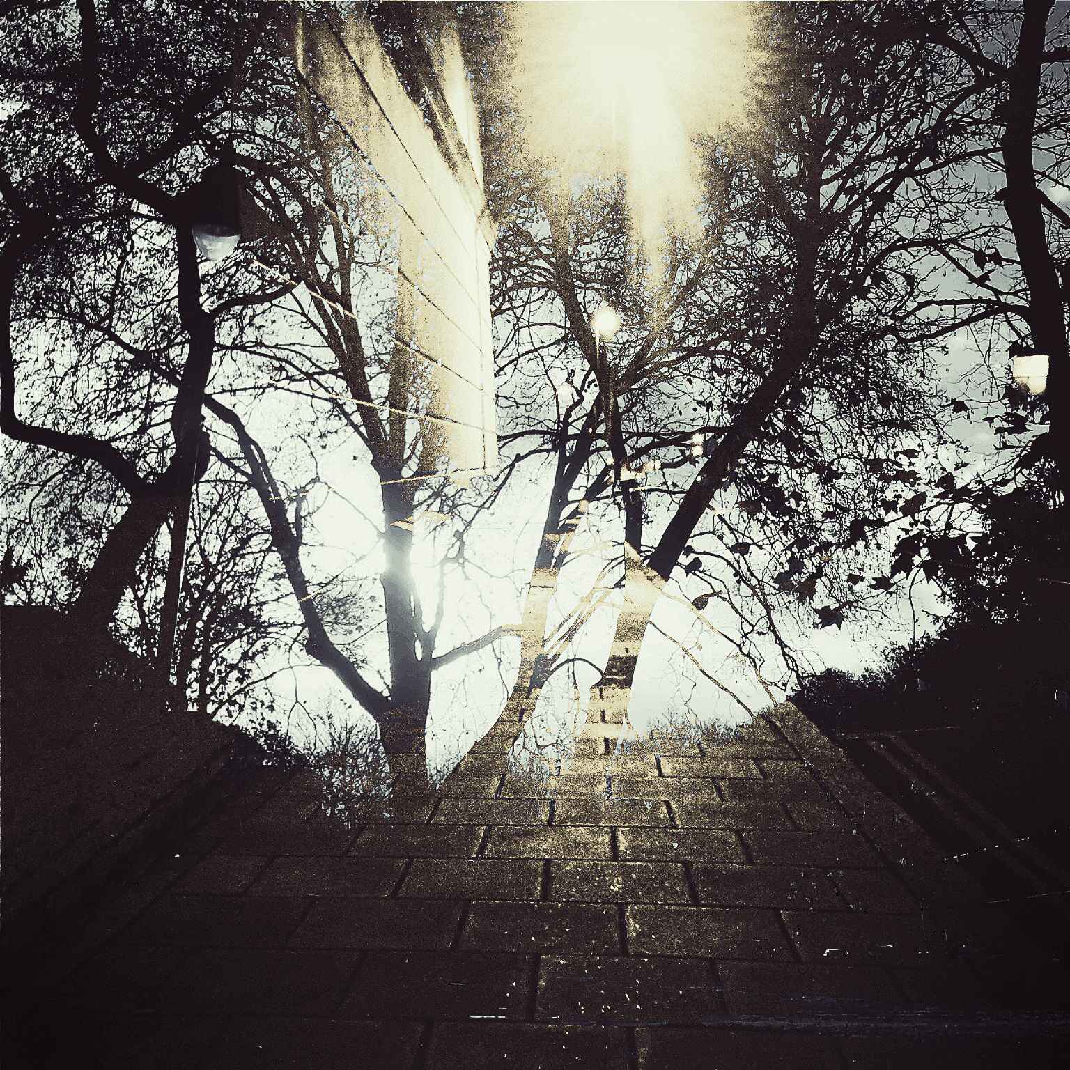 Brixton Hill.jpg