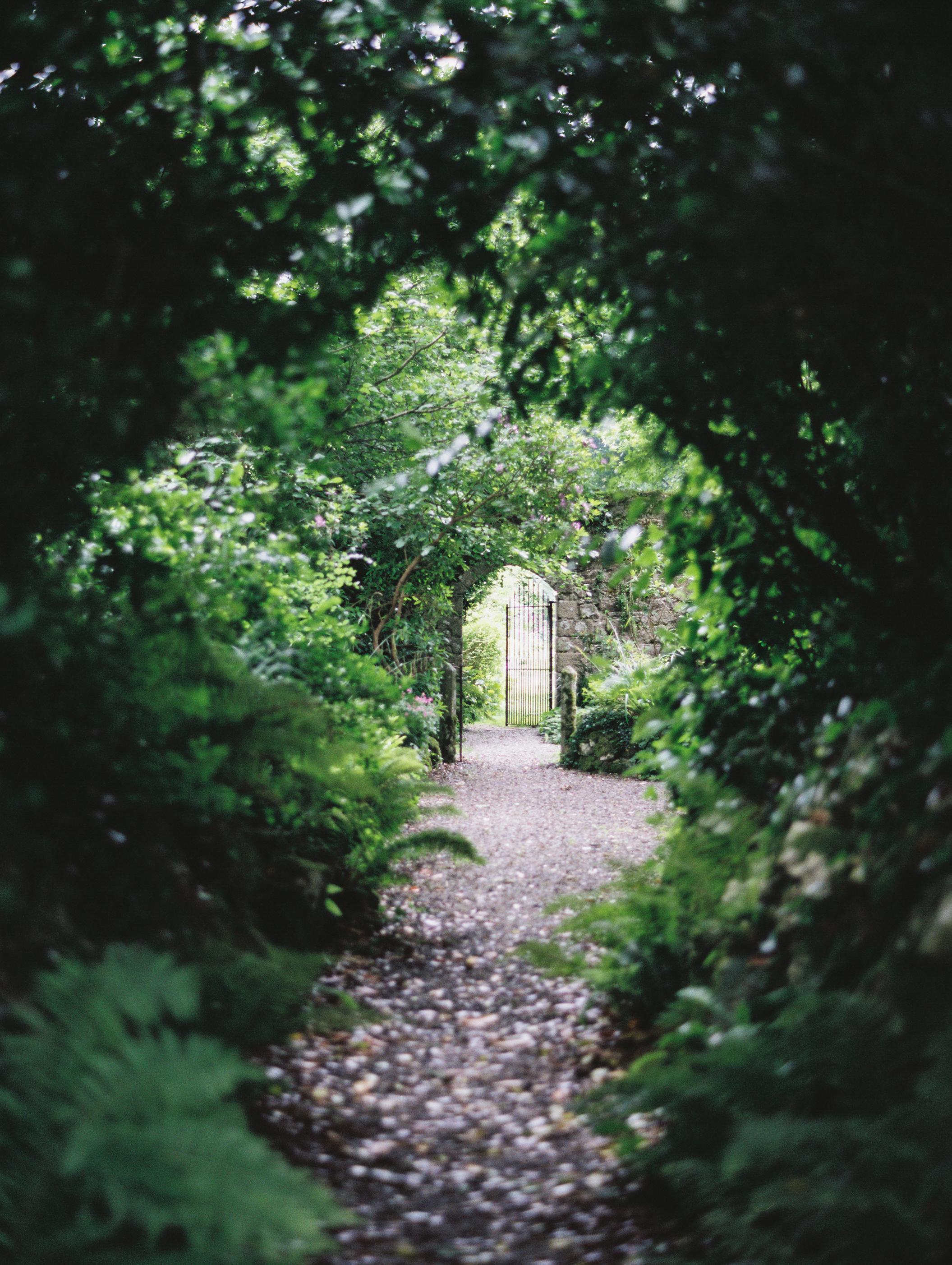 As_Ever_Photography_Secret_Garden-2.jpg