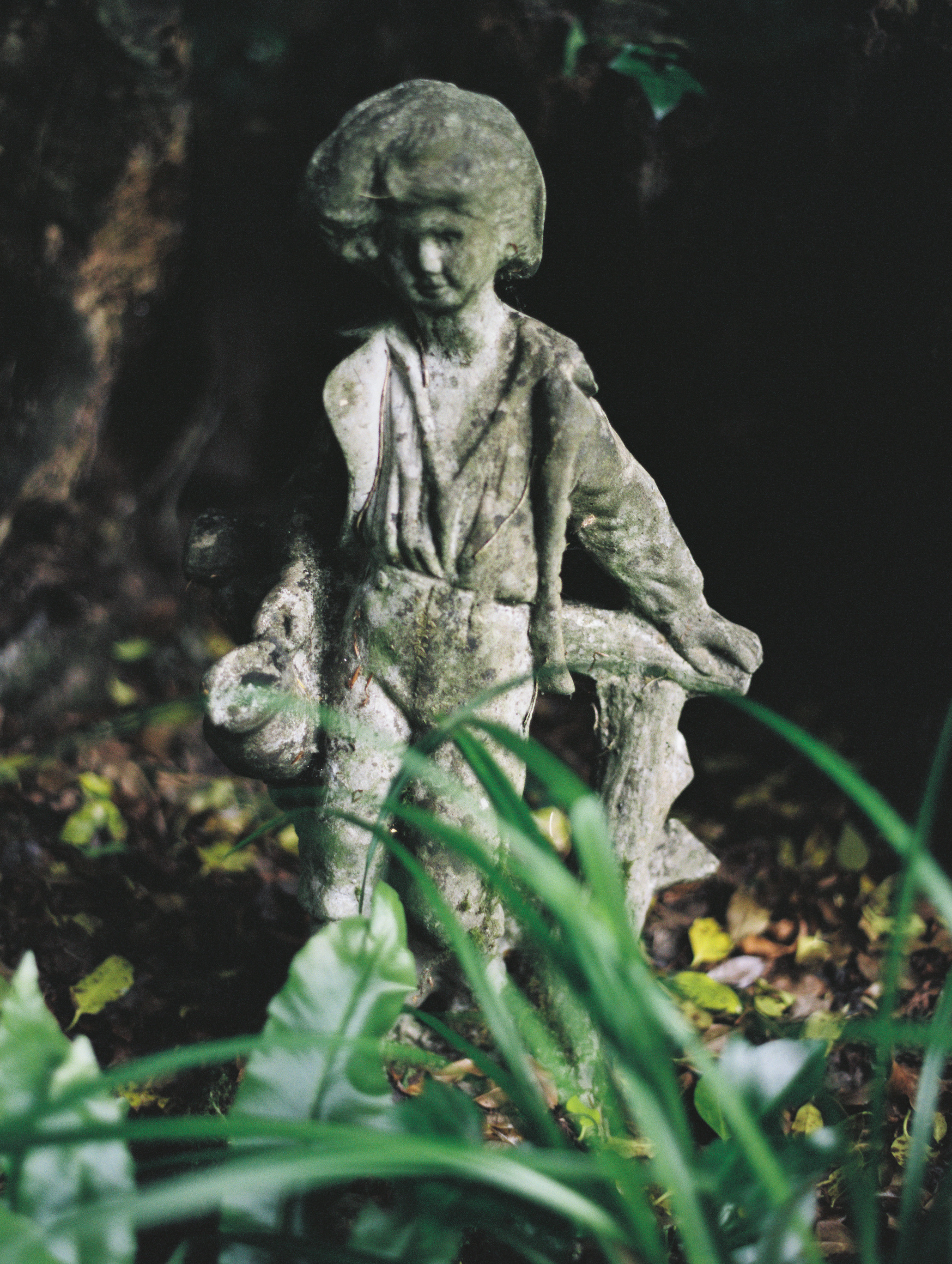 As_Ever_Photography_Secret_Garden-5.jpg