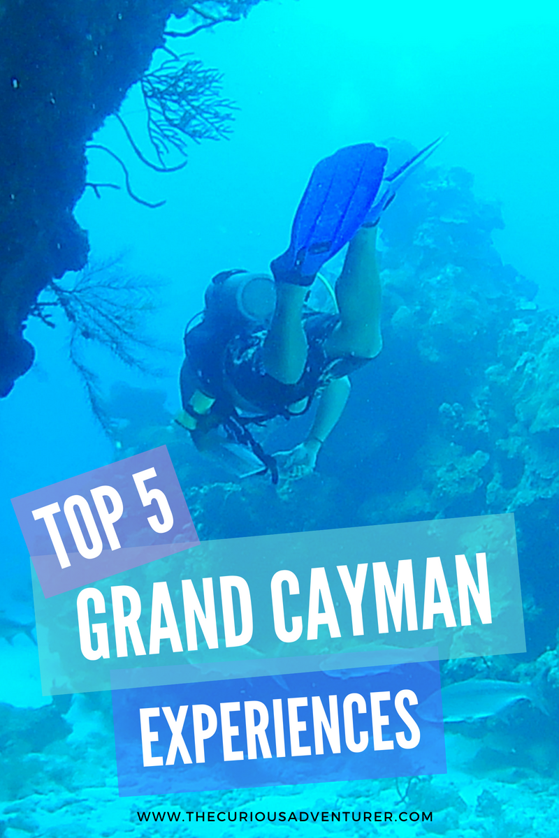 www.thecuriousadventurer.com/blog/top-5-grand-cayman-experiences