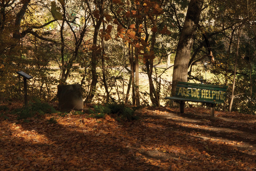 My favorite bench in Wyman Park Dell in the Charles Village neighborhood of Baltimore.