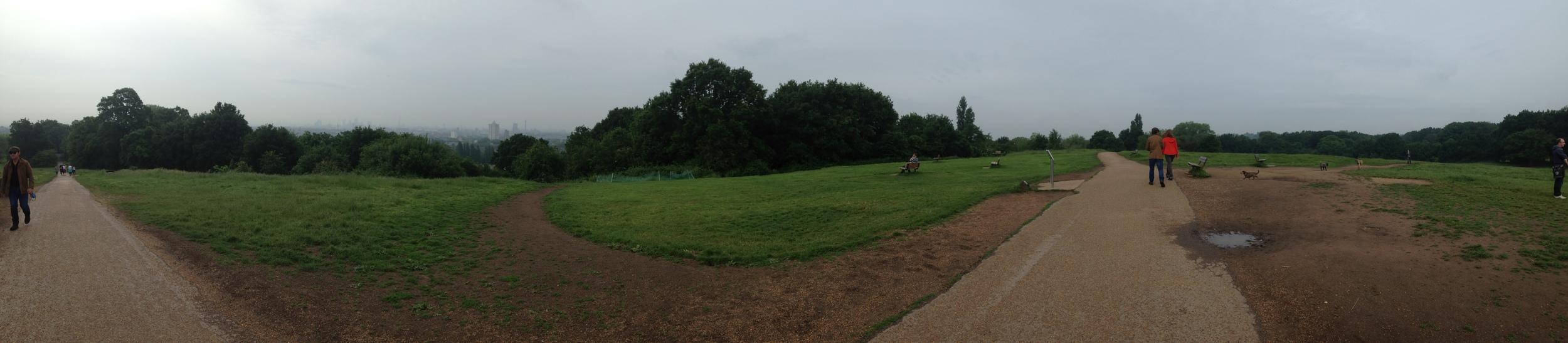 Hampstead heath panorama