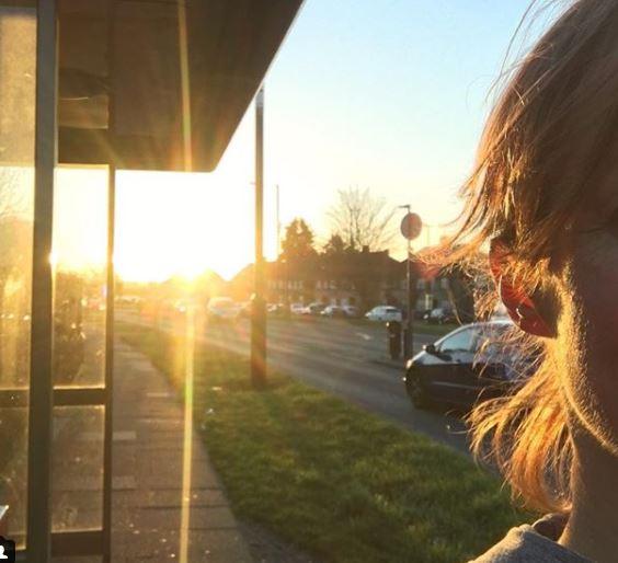 golden sun.JPG