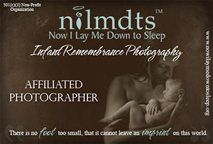 NILMDTS.png