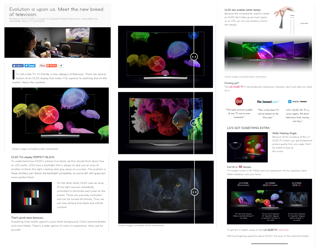 1. Technology - LG prides itself on the ingenuity of their products, but conveying that through limited words and stock pictures could often be a challenge. One of the genuinely more impressive aspects of LG's OLED technology is how colors contrast on the