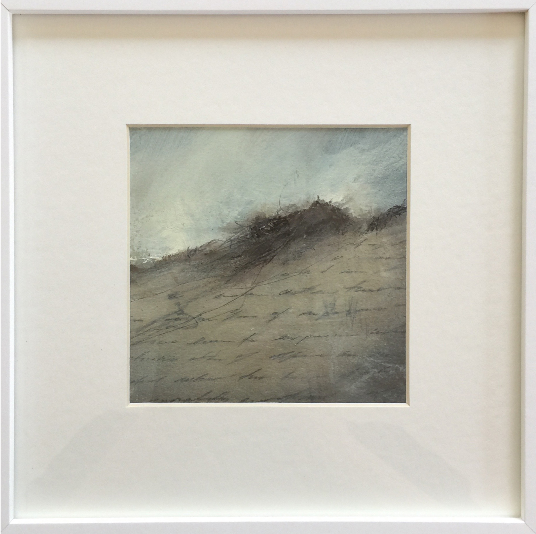 scrubby dune.jpg