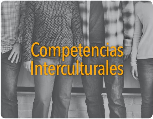 CompetenciasInterculturales-Img.png