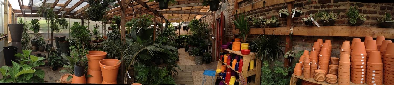 Crest garden Greenhouse