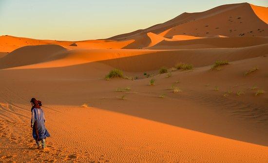 SLEEPY SAHARA   Accommodation Options in the Desert