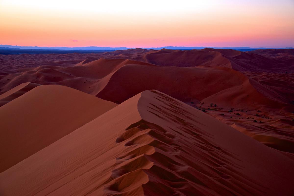 merzouga morocco desert tours.jpg