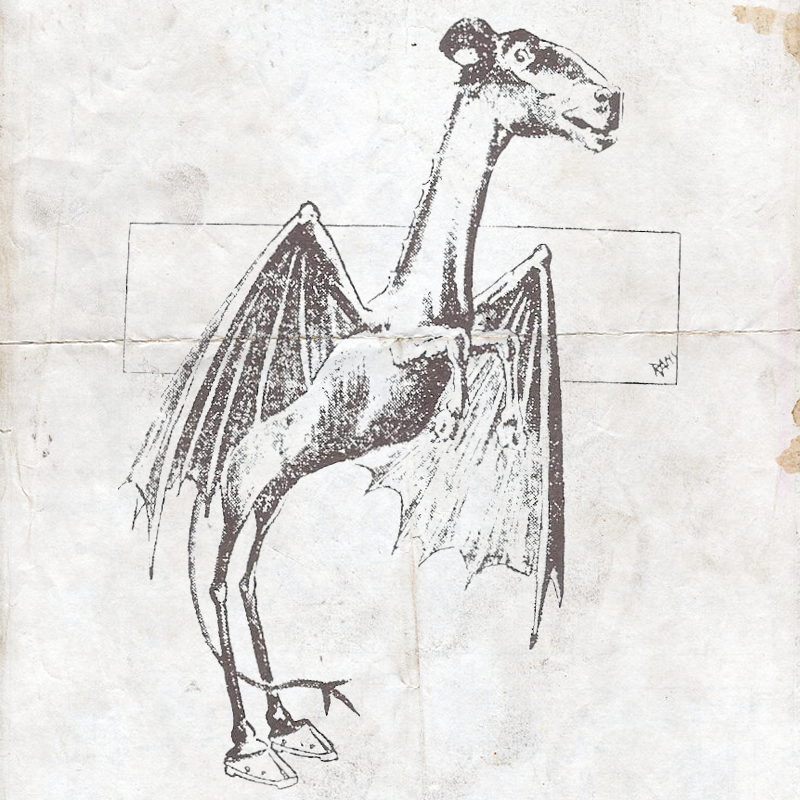 An image of the Jersey Devil taken from the January 1909 Philadelphia Evening Bulletin.