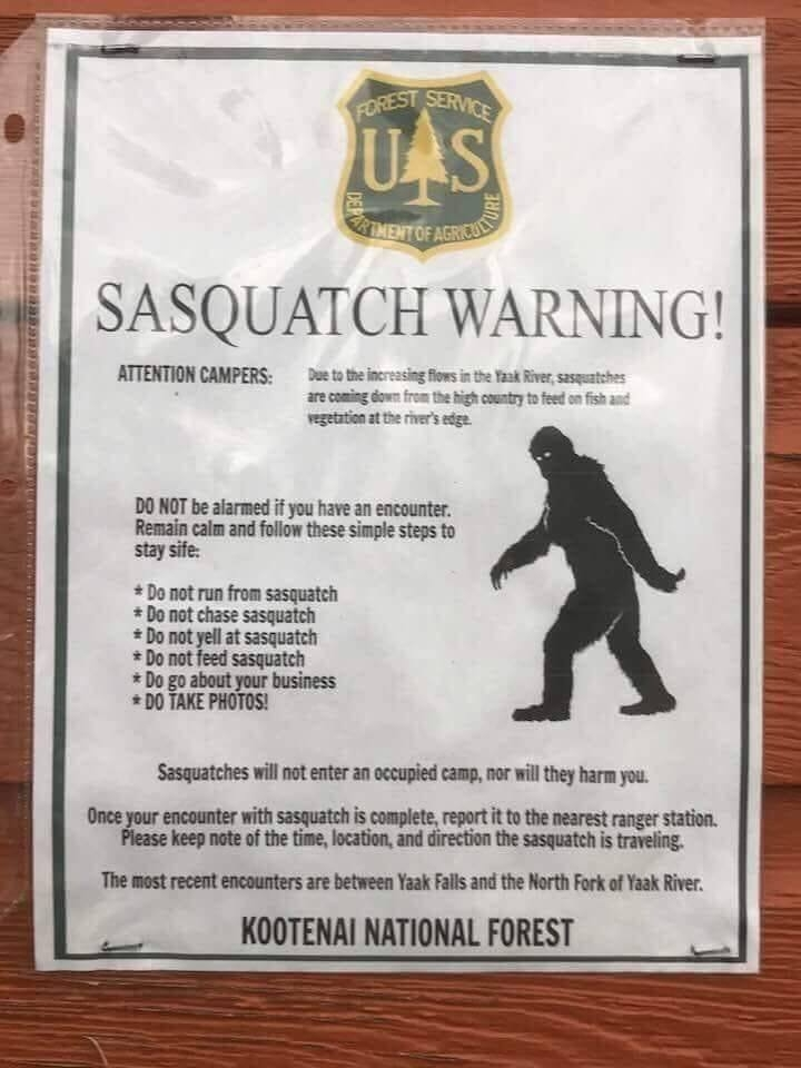 The forged warning poster.