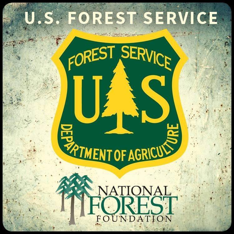 US Forestry.jpg
