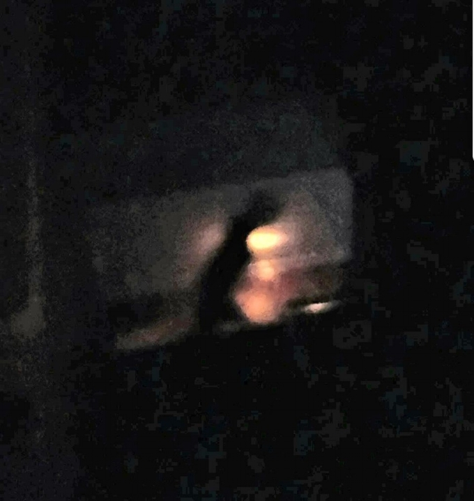 A still image of the being that ran across the woman's stairway.