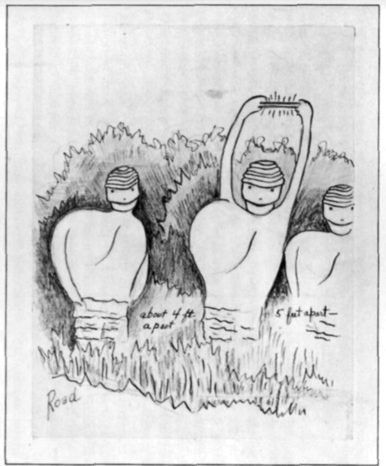 A sketch made by Stringfield of the creatures described by Hunnicutt.