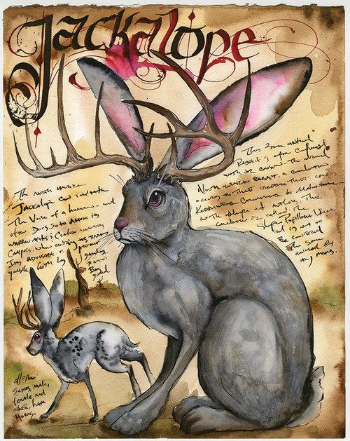 bambi_FGU+Jackalope+01.jpg