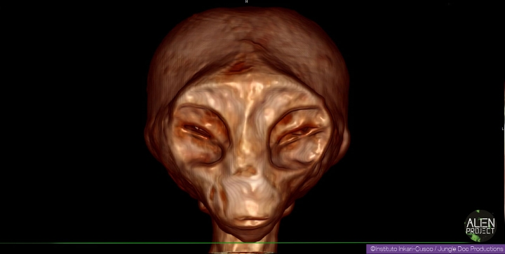 A high definition scan of the mummy referred to as Josefina, published to the Alien Project website.  (Image credit: Instituto Inkari-Cusco/Jungle Doc Productions)