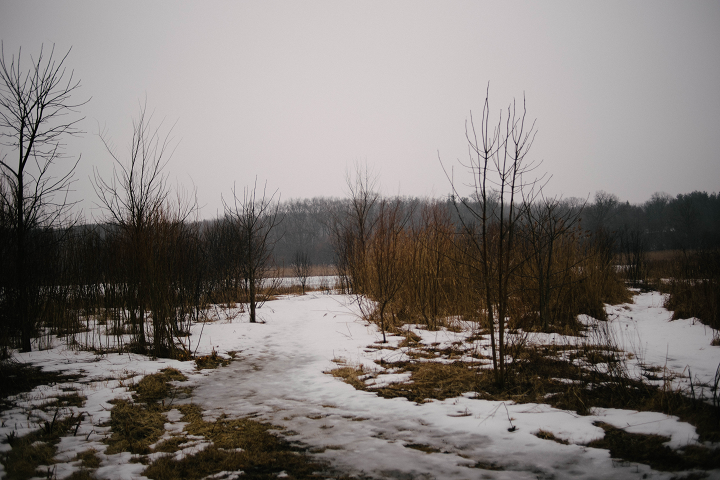 The Dufield Pond Conservation Area is approximately 78 acres in size.  (Emily Wayland / Singular Fortean Society)