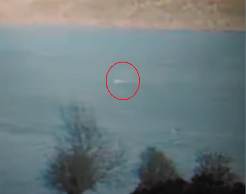 Circled in this still image from the video is the rapidly moving object that some think could be Nessie.  (Eoin O'Faodhagain)
