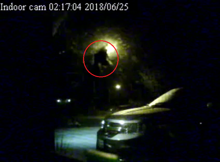 A still image from the video that appears to show a large creature fly in front of a home security camera.  (IllinoisHustler / YouTube)