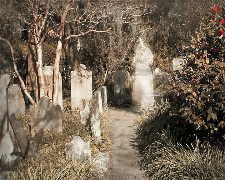 Kim's work captures the beautiful normality of ghosts.  (Kim Deslandes)