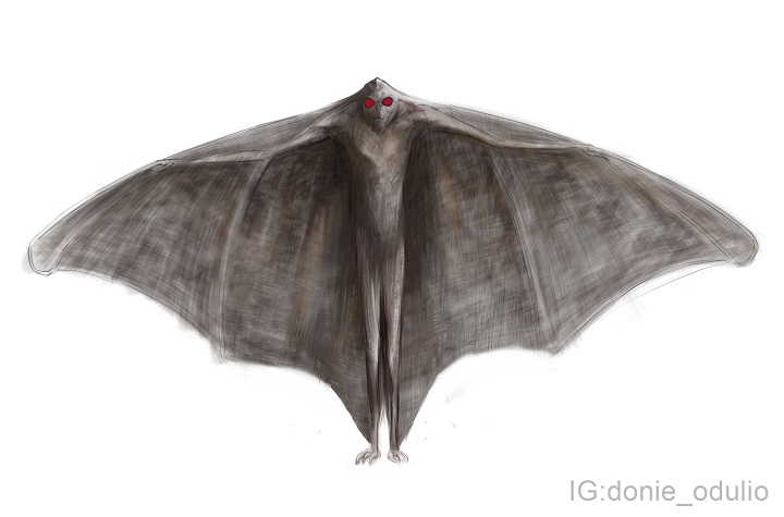 Bobbi said that the creature she and her son saw was similar in appearance to illustrations of the Mothman drawn by artist Donie Odulio.  (   Donie Odulio   )
