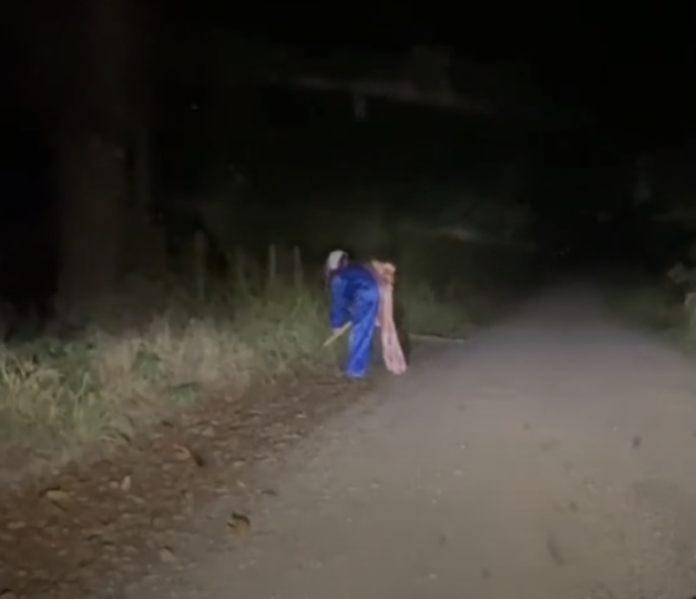 The clown was spotted with a shovel on the side of the road near Russellville, Arkansas.  (Brayden Ledford / TikTok)