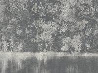 MIZUMI PANEL CARBON W924/01FP