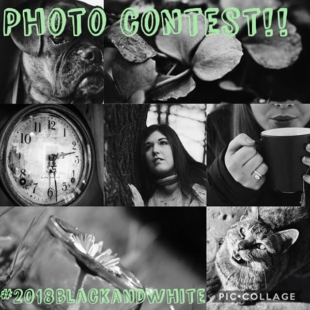 Hey guys, this week I have teamed up with some friends to host a little photo contest. Below are the theme and rules. ——————————————— Theme: black ▪️ & white ▫️ You have to follow these rules: * follow all hosts:  @stolentides @matt_square @shattered.lenses @sweetlilacmoments @curious_robot @arcadianphotography @souledwater @lima.photo * post your pictures to the hashtag #2018blackandwhite (unlimited entries) * comment when done and tag some friends!  Contest ends Friday, the 16th March. There will be one winner per host. Good luck everyone! 🍀