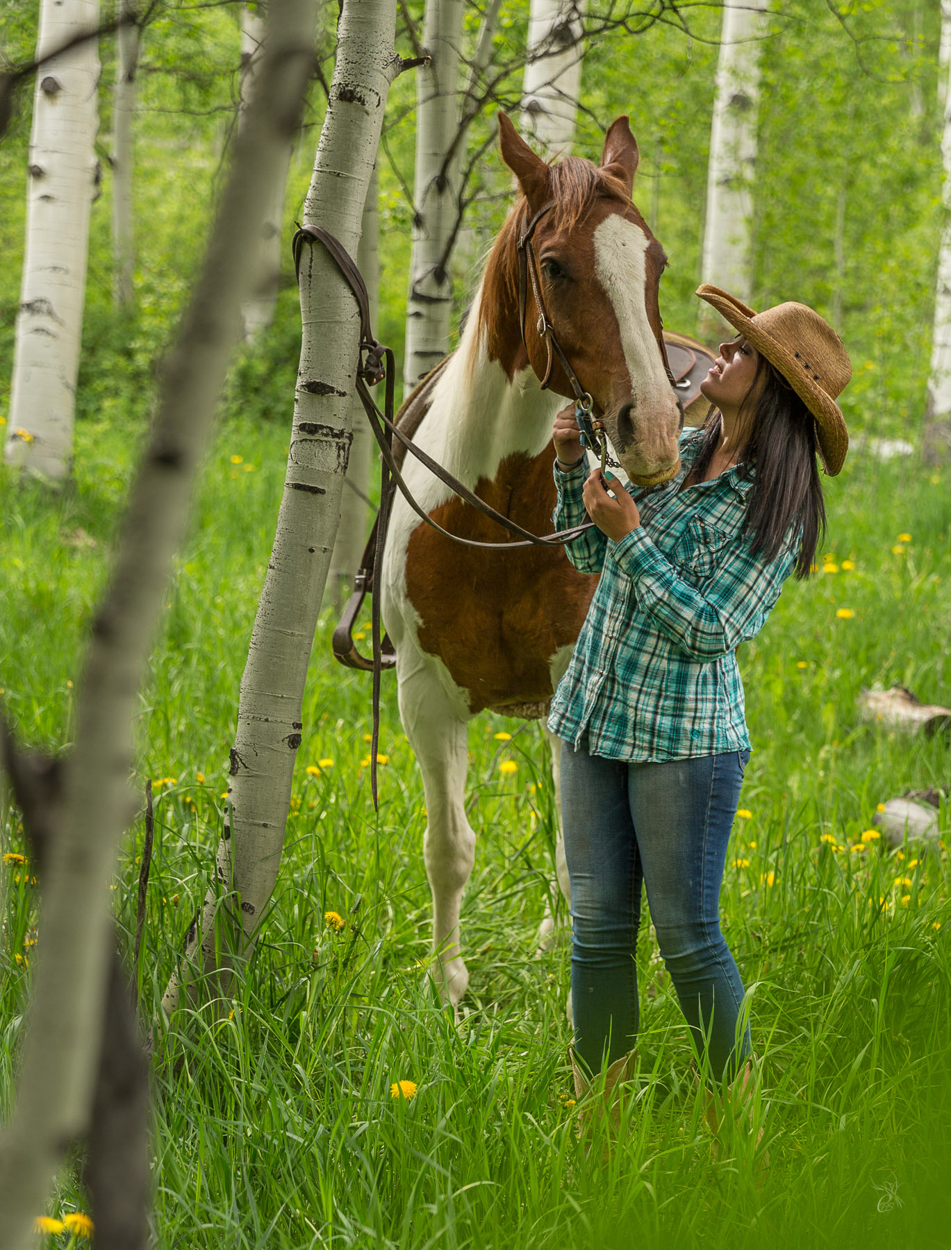 Quiet Time with Horse