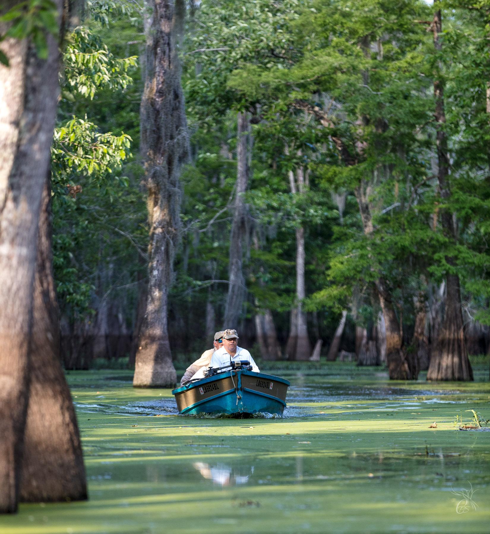 Swamp Boat