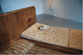 Wooden Bed, Horsehair Mattress (installation view) (2009), Performance/Installation, Furniture, dress and journal made from antique bedding, down