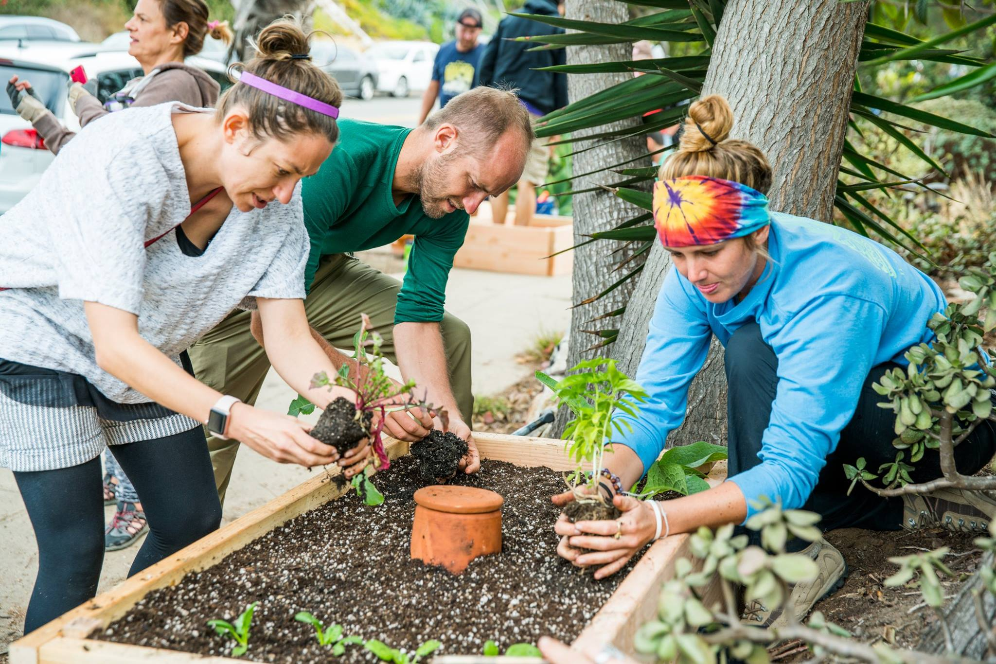 Rob Greenfield and friends work to plant a Little Free Garden during a build event in San Diego, California in the fall of 2017. Photo credit: Drew McGill