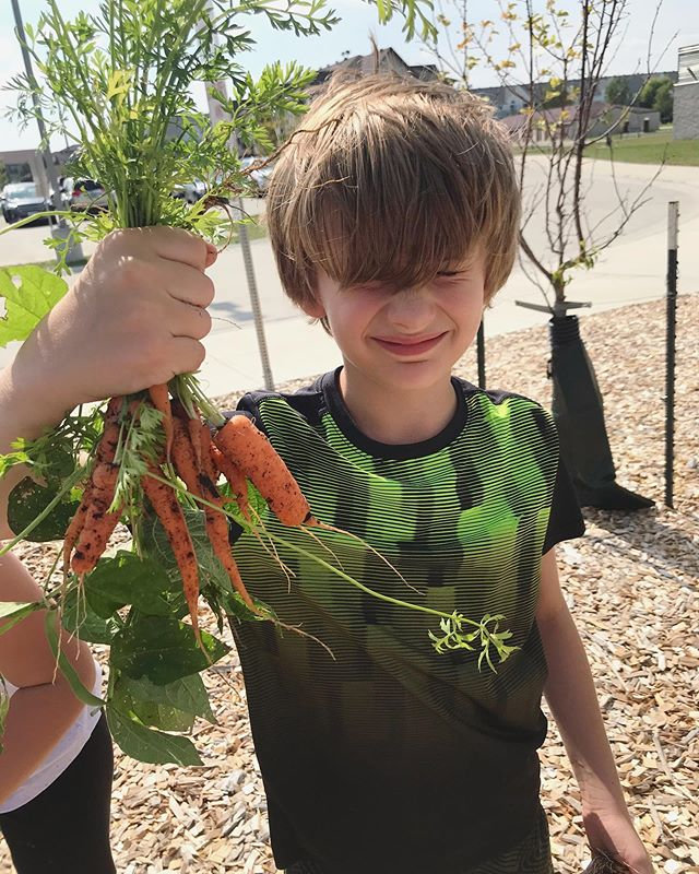 Jayden is enjoying an afternoon snack from #LittleFreeGarden no. 223! 🥕 [📸: Mrs. @amyleguizamon] - - - #WFPSchools #kidswhogarden #growyourownfood #foodisfree