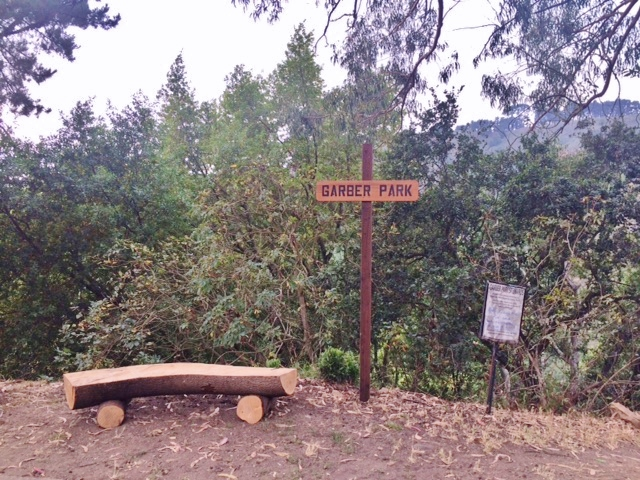 Walkers on Alvarado rejoice! At the Alvarado entrance to Garber Park there is a new, sweet log bench cut from a fallen bay laurel tree that had blocked the trail near the Rispin entrance. Upcycling at its best!