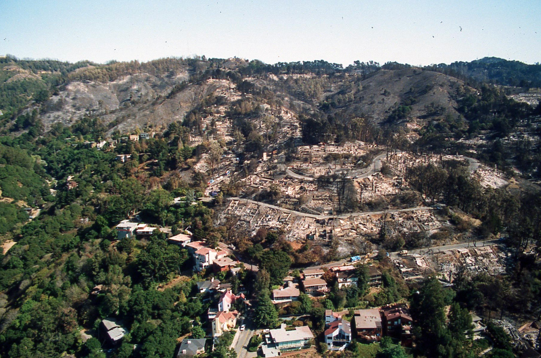 In the 1991 Firestorm, homes were lost on ridges without fuel breaks. Fire crowned in the eucalyptus grove above Gwin Canyon but did not spread into the oak/bay woodlands of Garber Park (bottom left corner of the above photo)