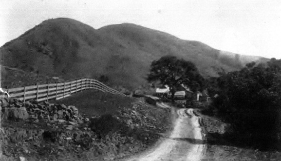 Along the road to the Summit House Staging Station, circa 1900 (perhaps earlier). The background shows Grizzly Ridge, now part of the EBMUD Siesta Valley Watershed.