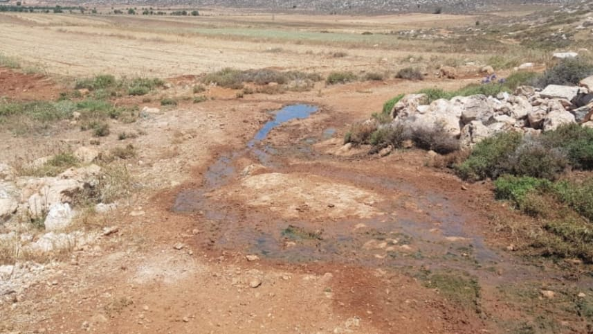 Raw sewage that flowed from the new West Bank settlement of Amihai into the fields of the Palestinian village Turmus.