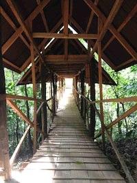 insidebridge_prepare_25k.jpg