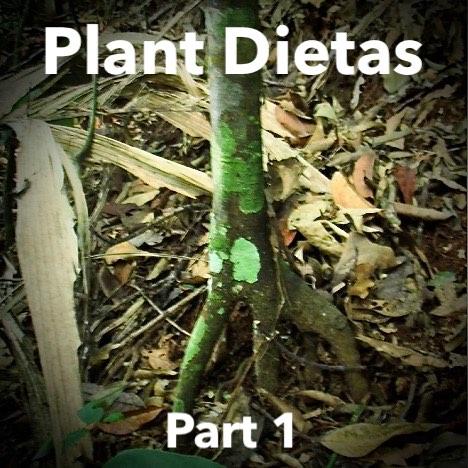 Plant Dietas Part 1 .jpg
