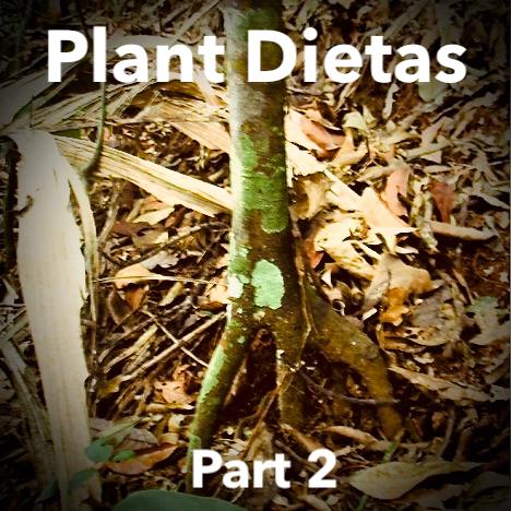 Plant Dietas Part 2 .jpg