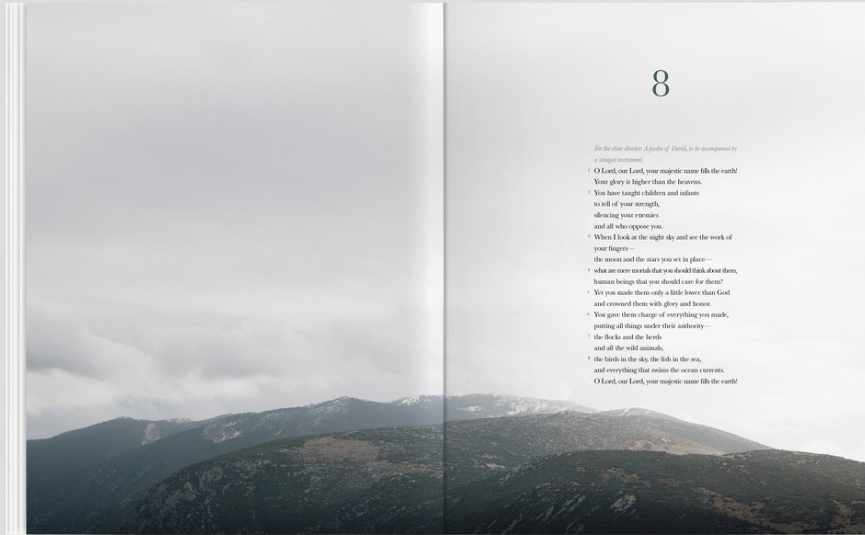 Straight text copy of the Bible paired with gorgeous photography= a new way to read the word