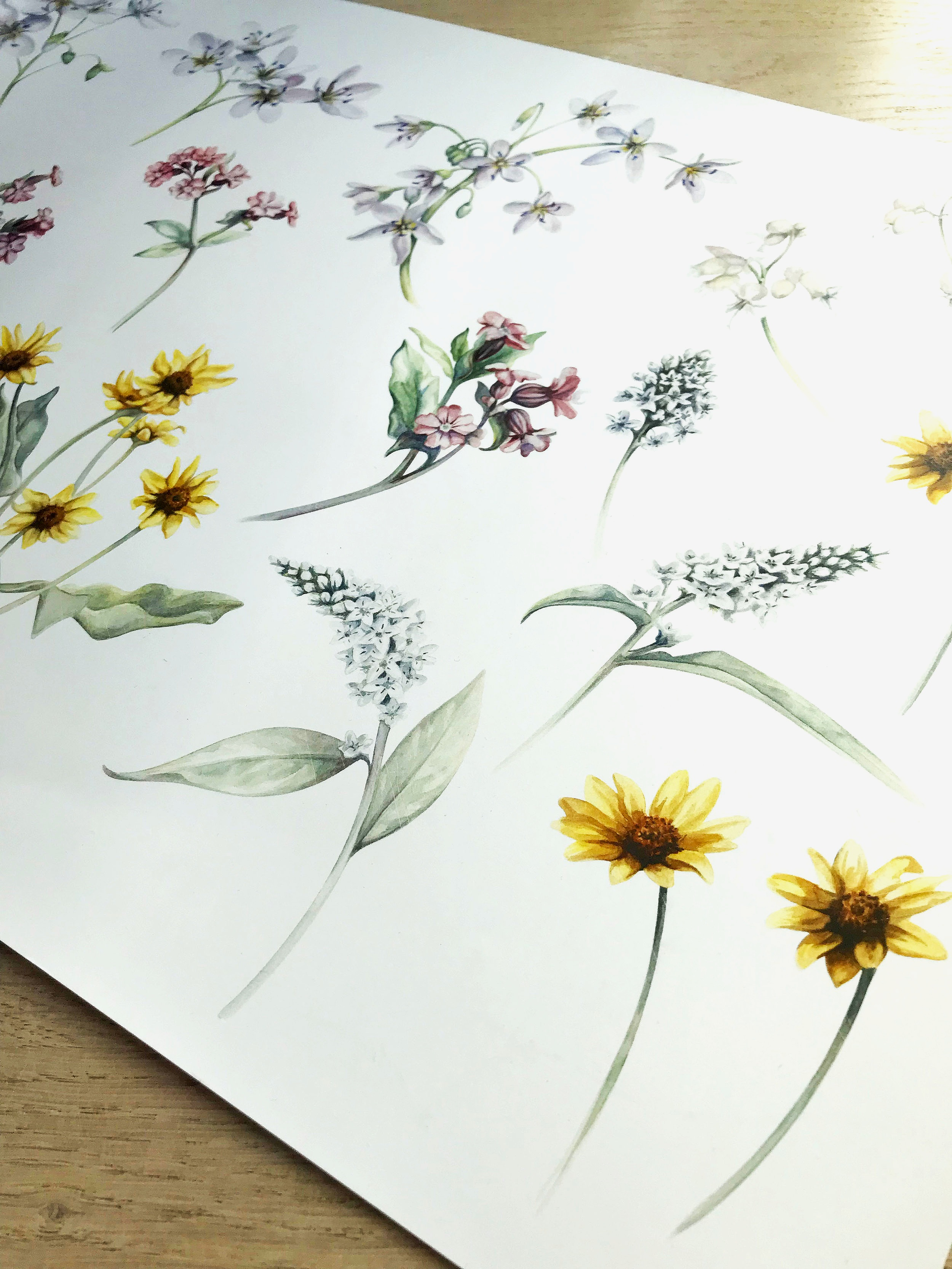 Original artwork for 'Primavera' for Liberty London Fabric AW19 'Aesthetic Renaissance'