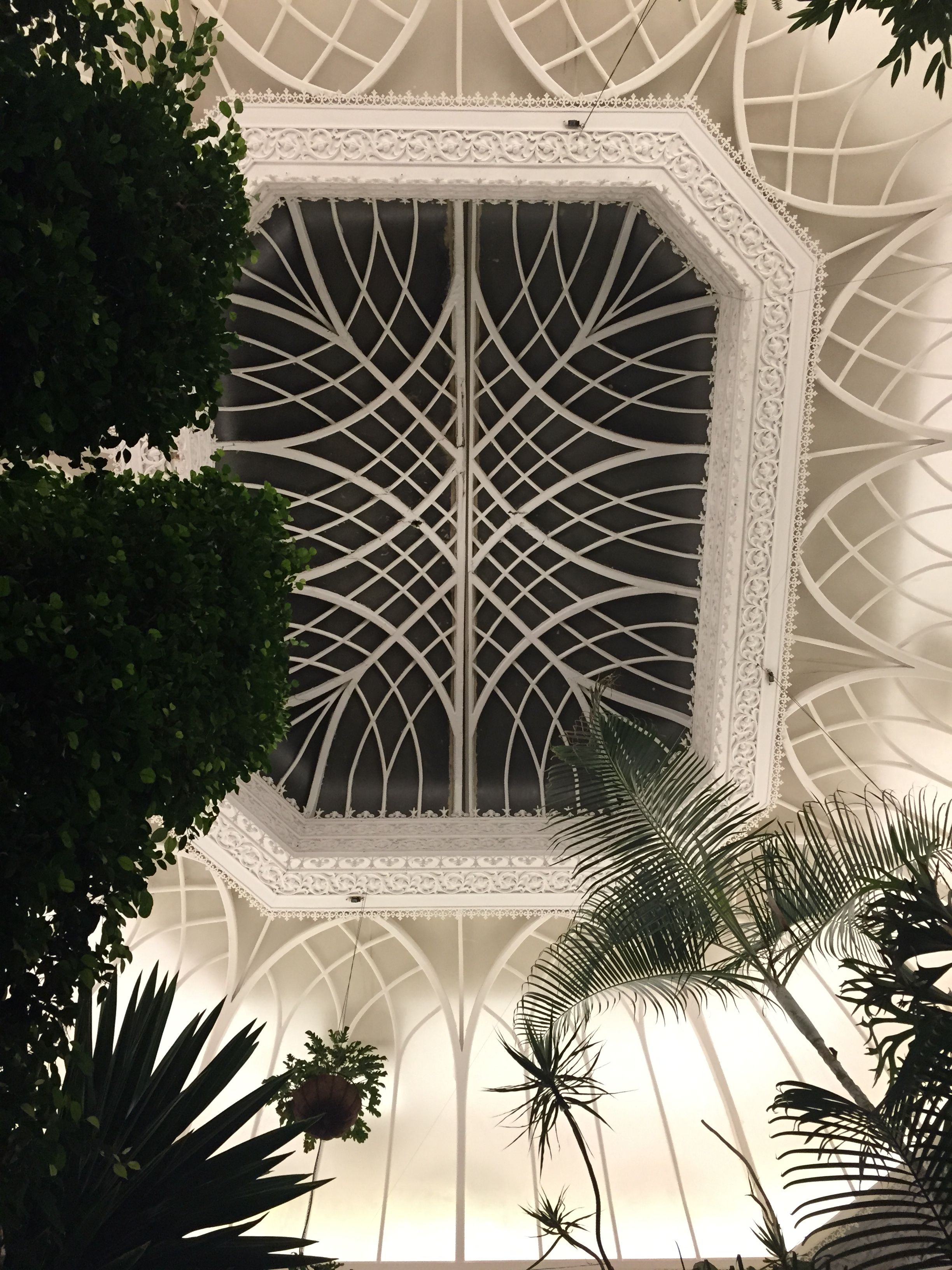 Looking up from my table in The Conservatory © Traverate 2016