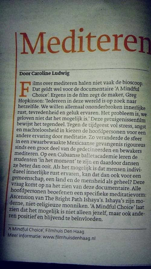 Dutch Aricle2.JPG