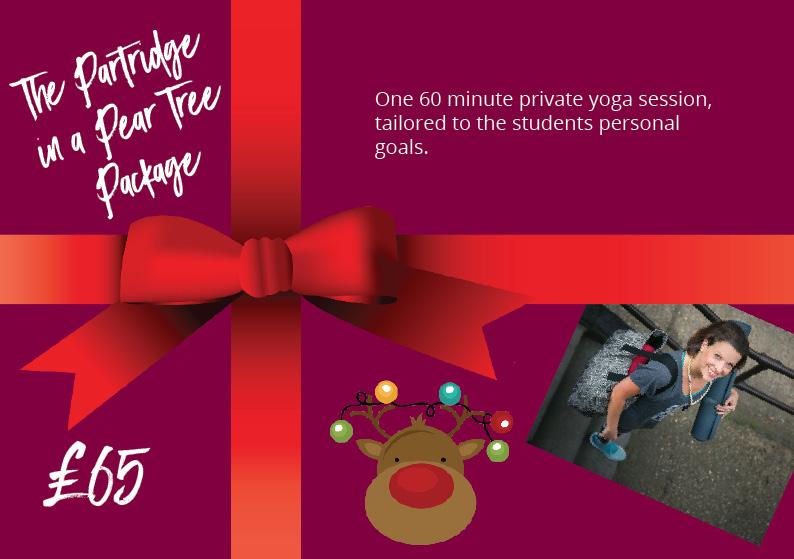 Christmas 1 partridge package.jpg