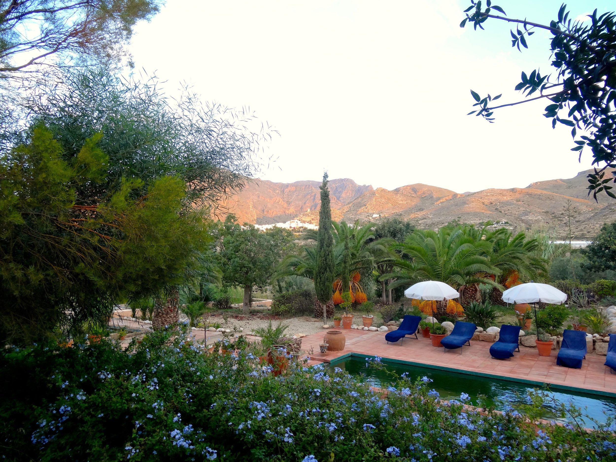 Garden and Pool Rectangle.jpeg