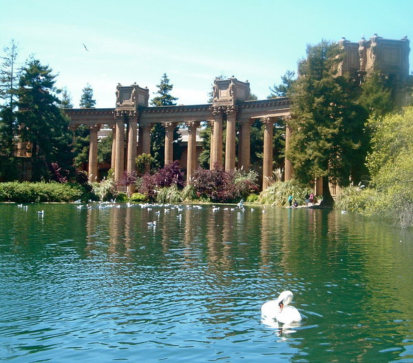 Palace of Fine Arts: The Swan